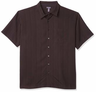 Van Heusen Men's Big & Tall Big and Tall Air Short Sleeve Button Down Poly Rayon Stripe Shirt