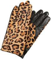 Club Monaco CLAUDIA GLOVE Gloves burgundy
