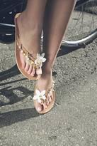Iris Jasmine Hand Embellished Leather Sandals