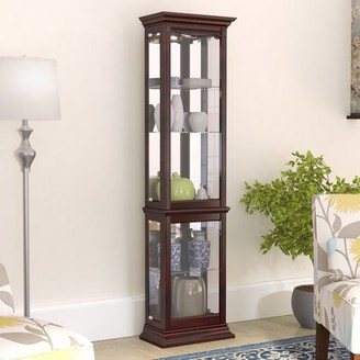 Maywood Lighted Curio Cabinet Charlton Home Color: Brown