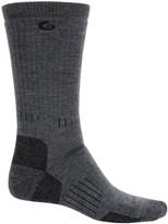 Point 6 Point6 Defender Socks - Merino Wool, Crew (For Men)