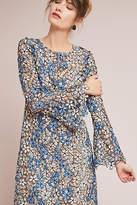 Shoshanna Mabel Lace Dress