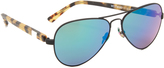 Westward Leaning Concorde 12 Sunglasses