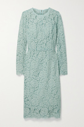 Dolce & Gabbana - Cotton-blend Corded Lace Midi Dress - Teal