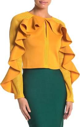 Gracia Mesh Ruffle Sleeve Blouse