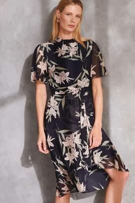 Phase Eight Womens Navy Gracen Palm Print Dress - Blue