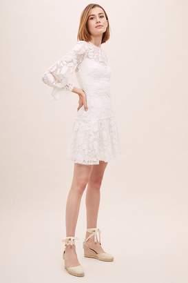 ML Monique Lhuillier Sylvia Embroidered-Mesh Dress