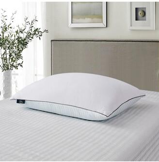 Blue Ridge Home Fashions 2pk Serta 233 Thread Count Summer & Winter White Goose Feather Bed Pillow - Jumbo - White