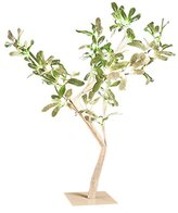 Camilla And Marc The Christmas Workshop 50 cm 32 LED Mistletoe Tree, Warm White