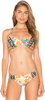 Nanette Lepore Copa Cubana Heartbreaker Bikini Top