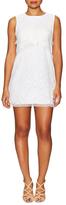BCBGMAXAZRIA Amelie Cotton Lace Sleeveless Dress