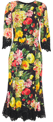 Dolce & Gabbana Lace-trimmed Floral-print Crepe Midi Dress