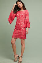 Eliza J Andressa Lace Dress
