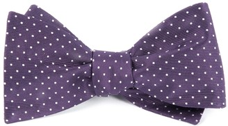 Tie Bar Mini Dots Eggplant Bow Tie