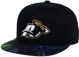 Top of the World Akron Zips Paradise Snapback Cap