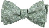 The Tie Bar Twill Paisley Moss Green Bow Tie