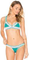 Kiini Liv Bikini Top in Green. - size M (also in S)