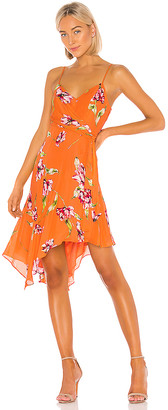 Parker Monroe Dress