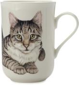 Maxwell & Williams Cashmere Cat Mug European Shorthair Gb
