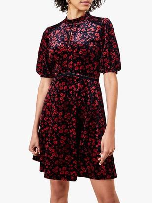 Oasis Ditsy Floral Velvet Dress, Black/Multi