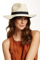 David & Young Colored Brim Panama Straw Hat