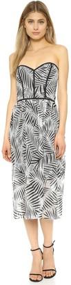 Parker Women's Azalea Dress