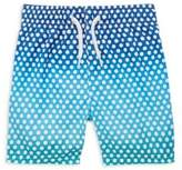 Appaman Baby Boy's, Toddler's & Little Boy's Polka Dots Swim Trunks