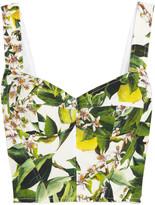 Dolce & Gabbana Orange blossom-print cotton-blend poplin bustier