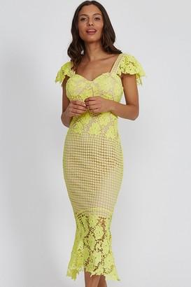 Liquorish Pistachio Lace Midi Dress
