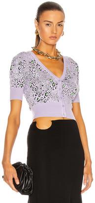 Versace Short Sleeve Cardigan in Lilla & Leopard | FWRD