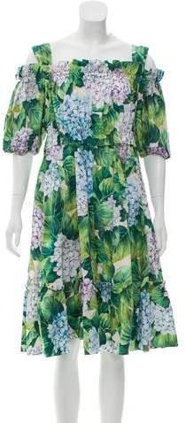 Dolce & Gabbana 2017 Hydrangea Print Dress