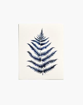 Madewell Fox Hollow Studios Blue Fern #1 Art Print