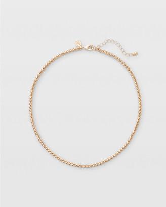 Club Monaco Collar Chain Necklace