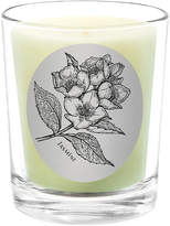 Qualitas Candles Jasmine Scented Candle