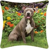 BrownTrout Publishers American Pit Bull Terrier Pillow