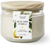 Williams-Sonoma Williams Sonoma Citronella Multi-Wick Meyer Lemon Candle