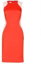 Stella McCartney Two-tone Stretch Dress