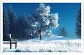 "Planet Scene Poster - Winter Landscape Nature Snow Bench Trees 93572 Tin Sign (8""x12"")"