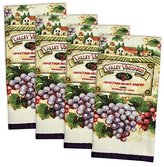 """Home Essentials DII 100% Cotton, Ultra Absorbent, Washing, Drying, Printed, Decorative Kitchen Dishtowel, 15 x 26"""" Set of 4- Vineyard"""