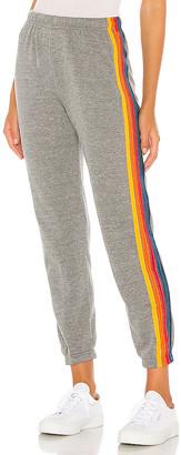 Aviator Nation 5 Stripe Sweatpants