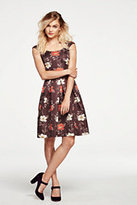 Lands' End Women's Pleated A-line Dress-Burgundy Border Print