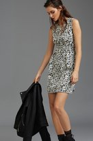 Dynamite Jacquard Fit And Flare Dress