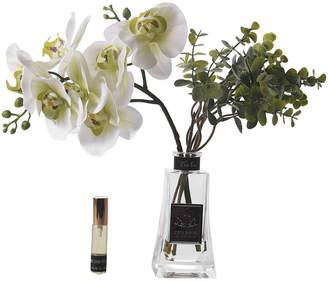 Côte Noire Cote Noire - Orchid - Moss White