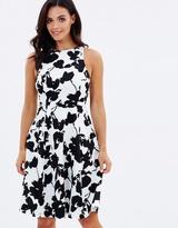 Forcast Amelia Floral Dress