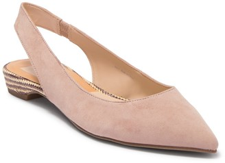 Dolce Vita Abe Suede Pointed Toe Flat