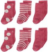 Little Giraffe Lollipop Box of Socks - 6 pairs Crew Cut Socks Shoes