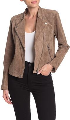 Blanknyc Denim Suede Moto Jacket