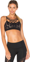 Vimmia Jaguar Breeze Sport Bra