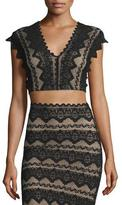 Nightcap Clothing Sierra Lace Crop Top, Black