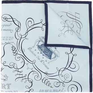 Hermes pre-owned Lary Decrire scarf